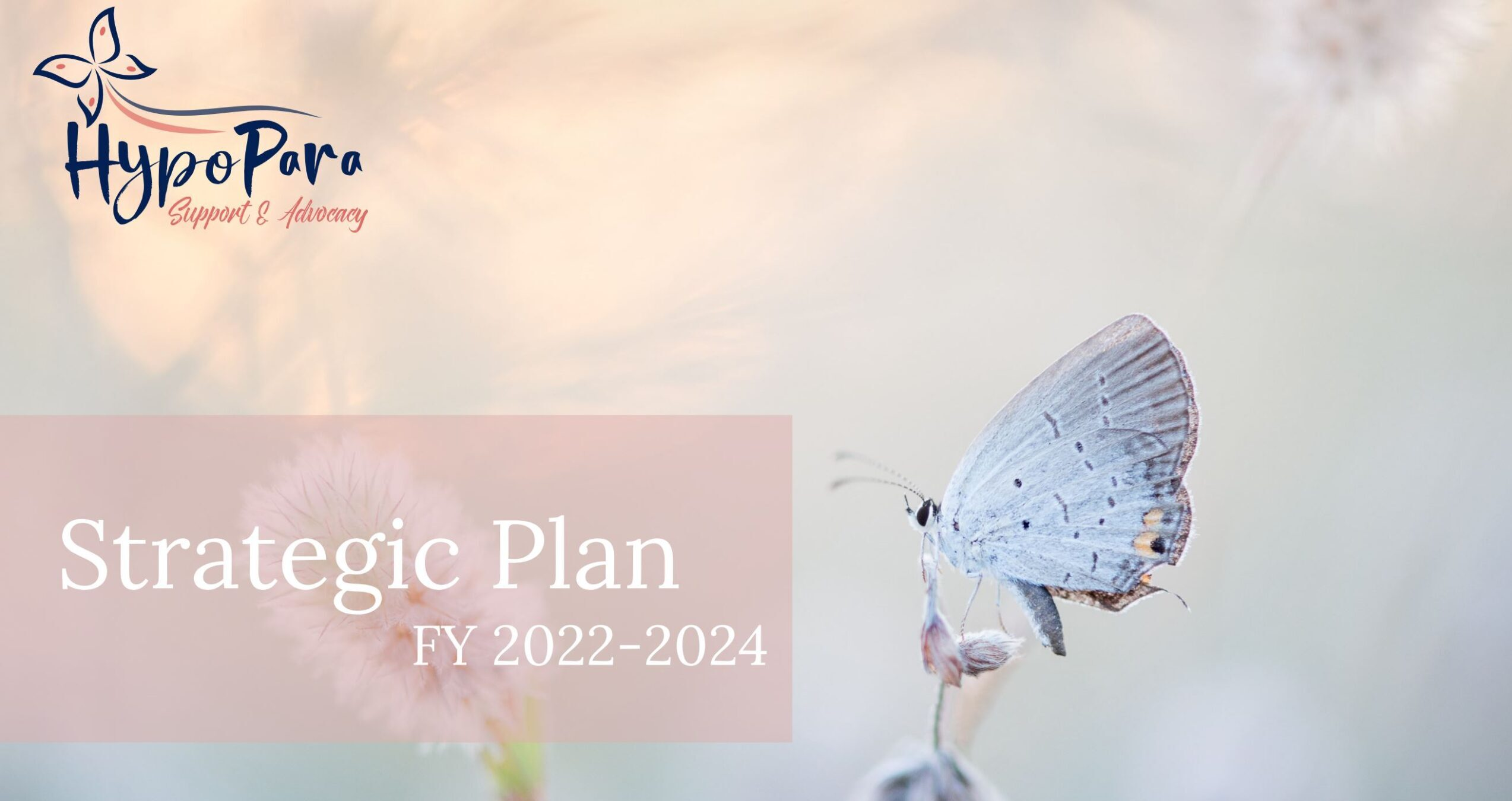 White butterfly sitting on a plant bud, with a pale pink background. HypoPara Support and Advocacy's name and logo are in the upper left corner, and the title Strategic Plan, Fiscal Years 2022 to 2024 is printed in the lower left quadrant